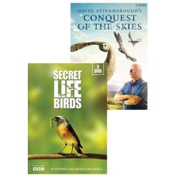 Secret life of birds Conquest of the skies (DVD)